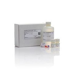 Invitrogen Q32854 Qubit® dsDNA HS Assay Kit现货促销